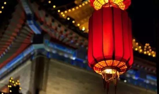 「遇见」瑞犬旺福迎新春,红红火火
